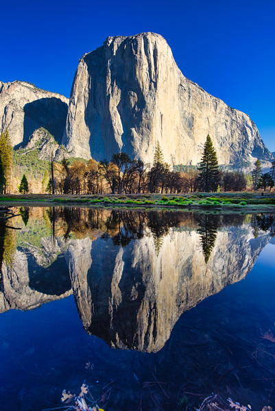 El Cap Morning Reflection_DSC9493.jpg