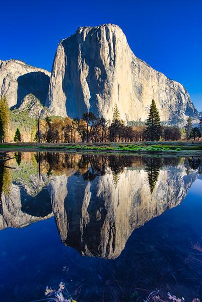 El Cap Morning Reflection_DSC9493.jpg