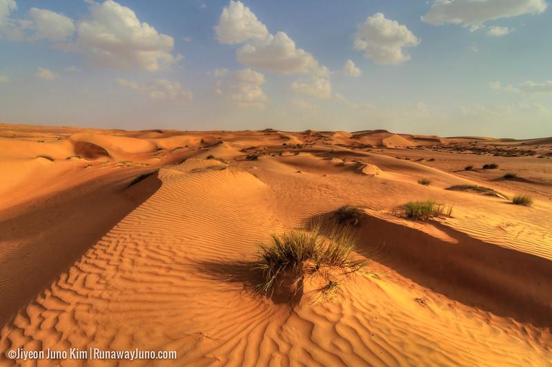 Oman-Wahiba Sands--3.jpg