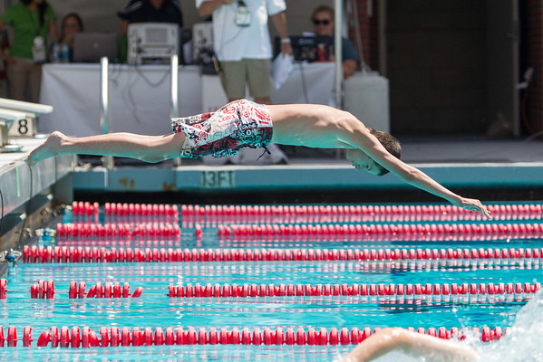 SOSC 2014 Summer Games - Aquatics