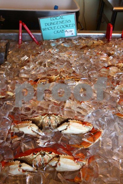 Dungeness crab 9999.jpg