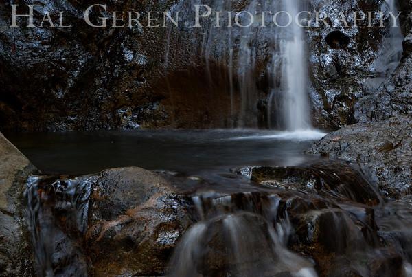 Uvas Canyon County Park 2012