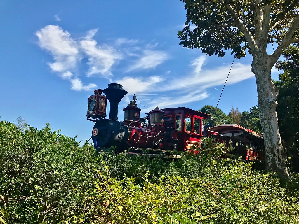 The steam train passing through Critter Country