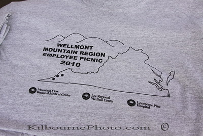 Wellmont Mountain Region
