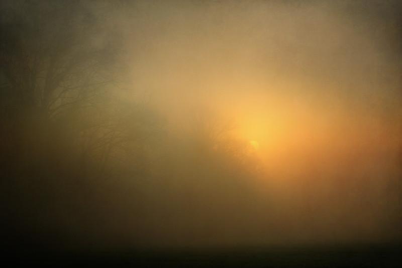 Foggy foggy morning.