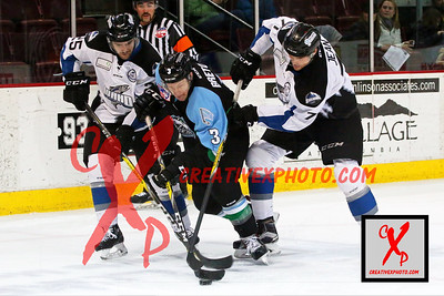 Steelheads vs. Alaska 11/30/2016