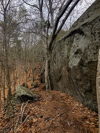 Red Rock Conservation Area, Gloucester