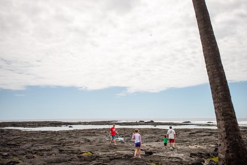 Hawaii2019-357.jpg