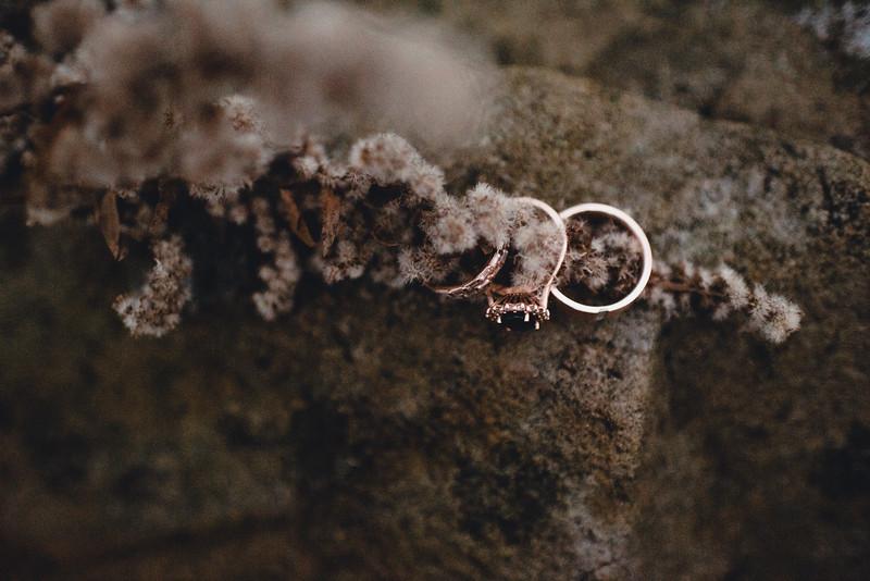Requiem Images - Luxury Boho Winter Mountain Intimate Wedding - Seven Springs - Laurel Highlands - Blake Holly -1471.jpg