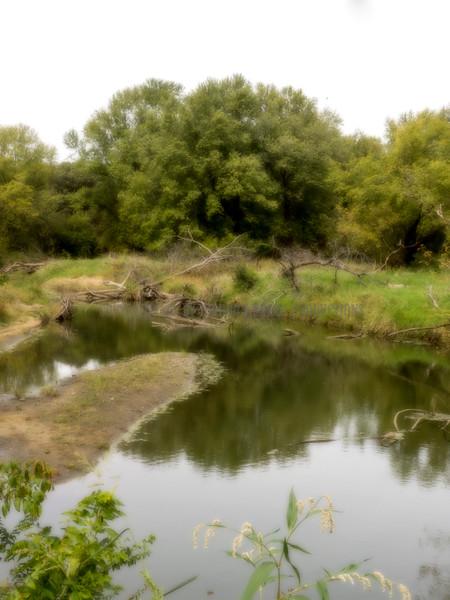 A painterly impression of Walnut Creek