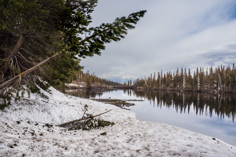 June 1 - Twin Lakes shore on the first day of June, 2019, Mammoth Lakes, CA.jpg