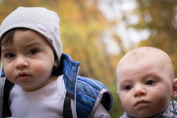 TC Babies