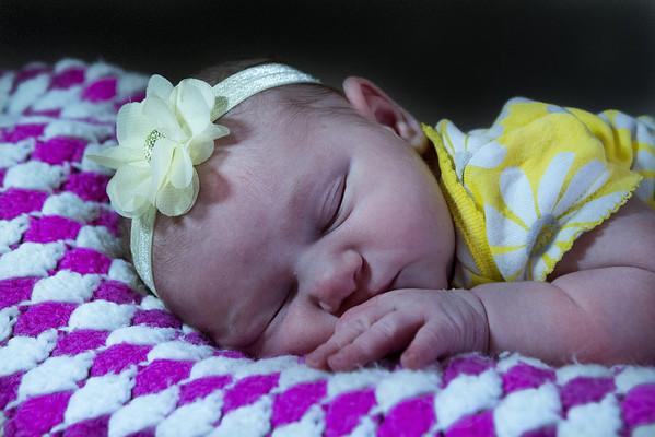 Baby  Bolin