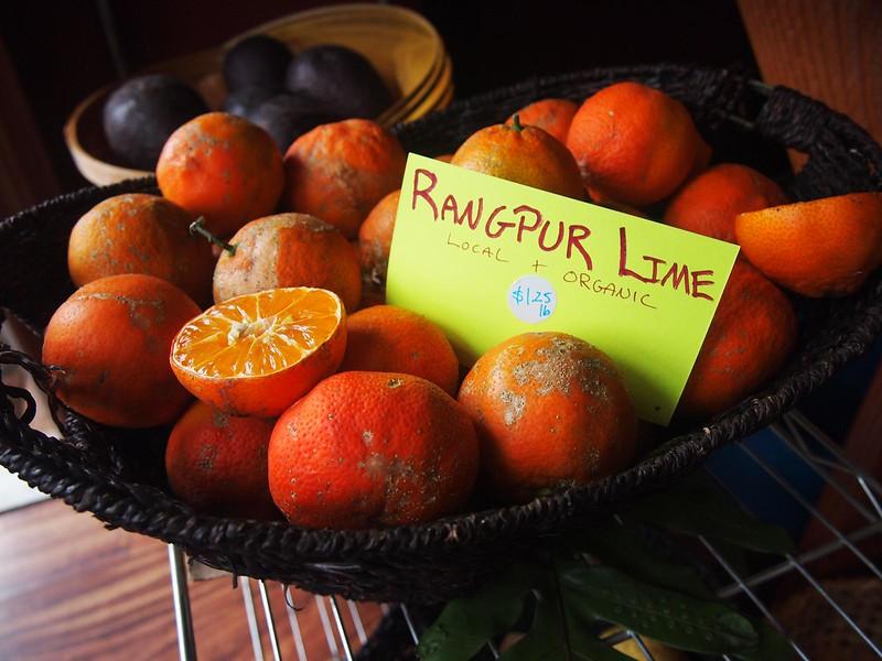 Rajpur-limes.jpg
