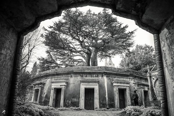 Highgate Cemetery West   London