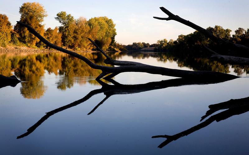 the sacramento river on a fall morning