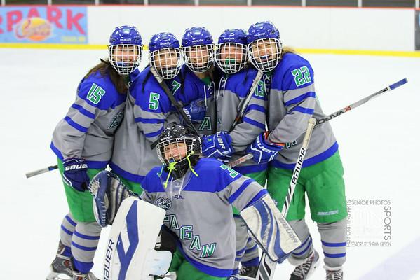 Girls Varsity Hockey vs Farmington