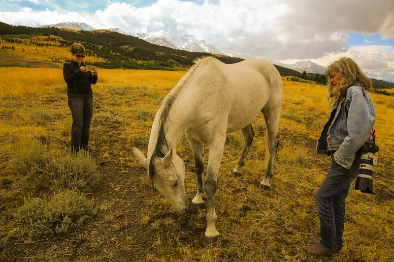 Master Key Ranch 18.jpg