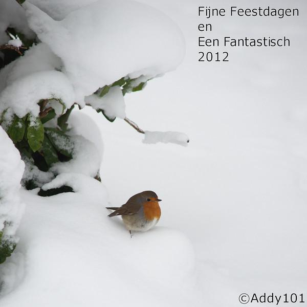 Kerstgroet 2011 (2).jpg