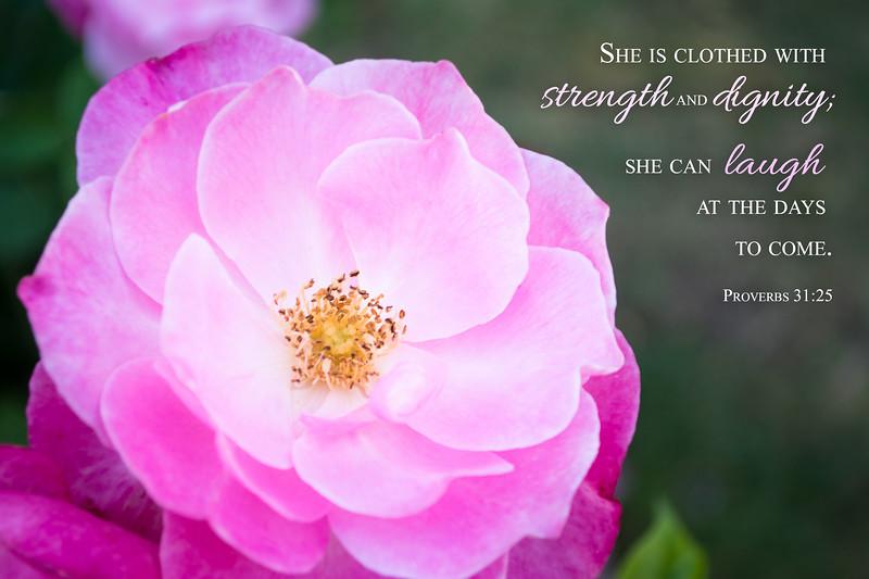 20_Proverbs31-25_NJ_2015-4-27.jpg