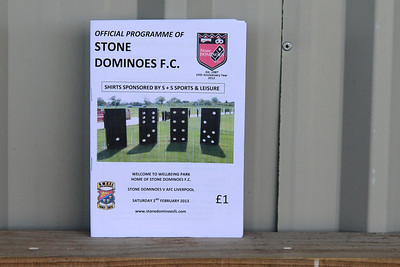 Stone Dominoes (a) W 6-0