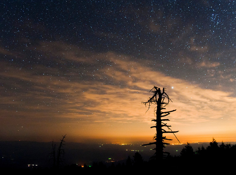 smugmug_night_on_marys_peak.jpg