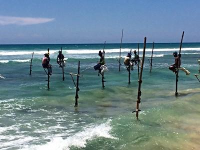2015 GV SRI LANKA - Negombo