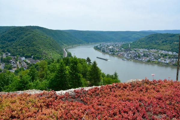Rhine Cruise on Viking Var