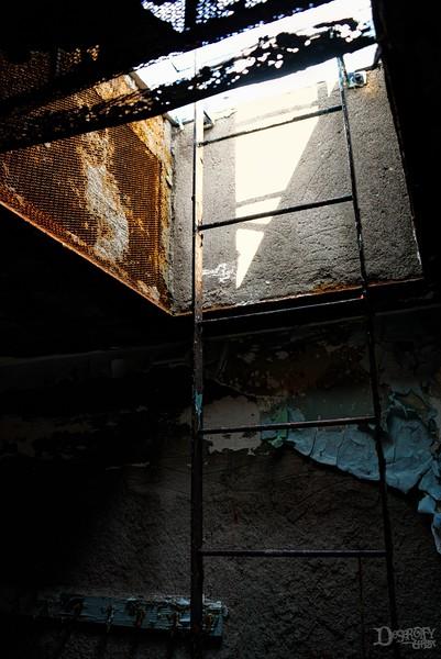ladder v2.jpg