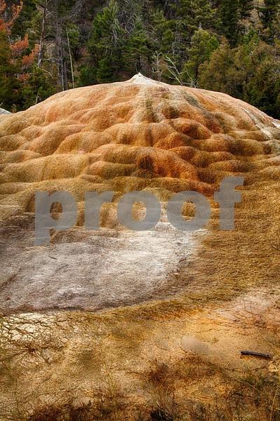 YNP Orange Springs Mound   4164_HDR.jpg