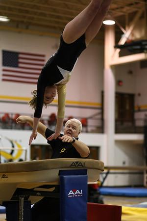 2007-2008 Centerville High School Gymnastics