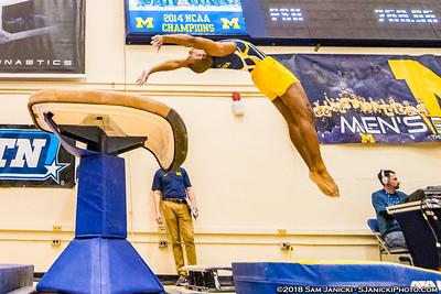 Vault - Michigan Men's Gymnastics Vs Penn State 3-24-18