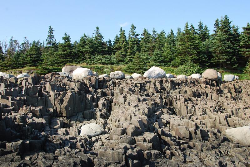 Flock of Sheep - 10