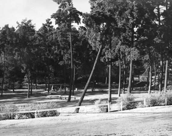 1937, Picnic Area