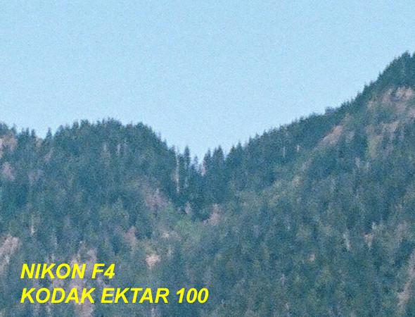 Nikon F4 dickerman mtn-100.jpg