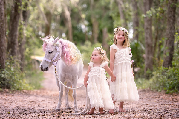 Unicorn mini April 2019 - Kettlehut