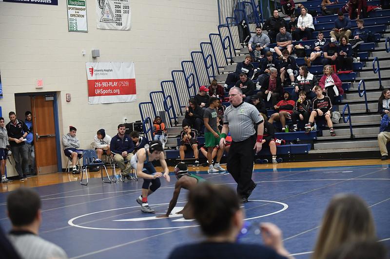 wrestling_2518.jpg