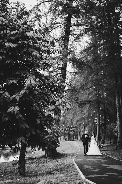 0537 - Andreea si Alexandru - Nunta.jpg