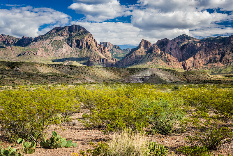 Texas and Big Bend Nat'l Park
