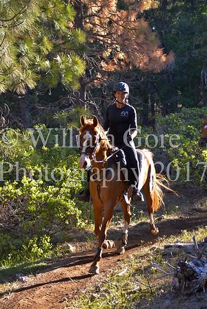 Wild West Friday ~ Rene Baylor
