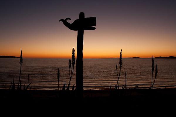 La Ventana - Baja California Sur