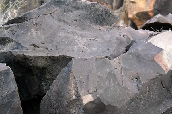 Hawaii Petrogylphs