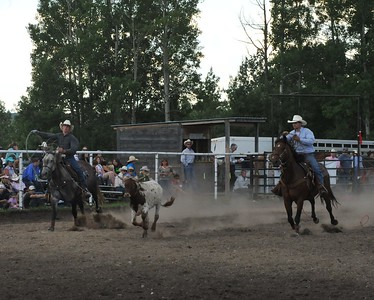 Team Roping (Section 4)