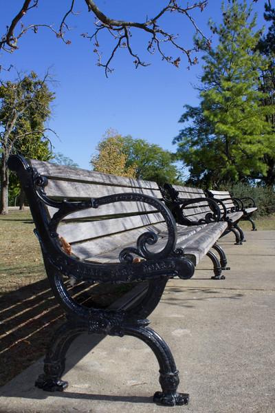 Cincinnati park bench.jpg