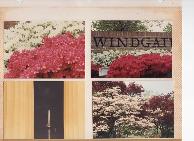 5-4-1991 Flowers.jpg
