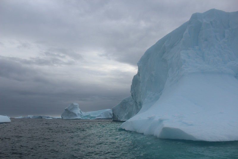 Antarctica 259.JPG