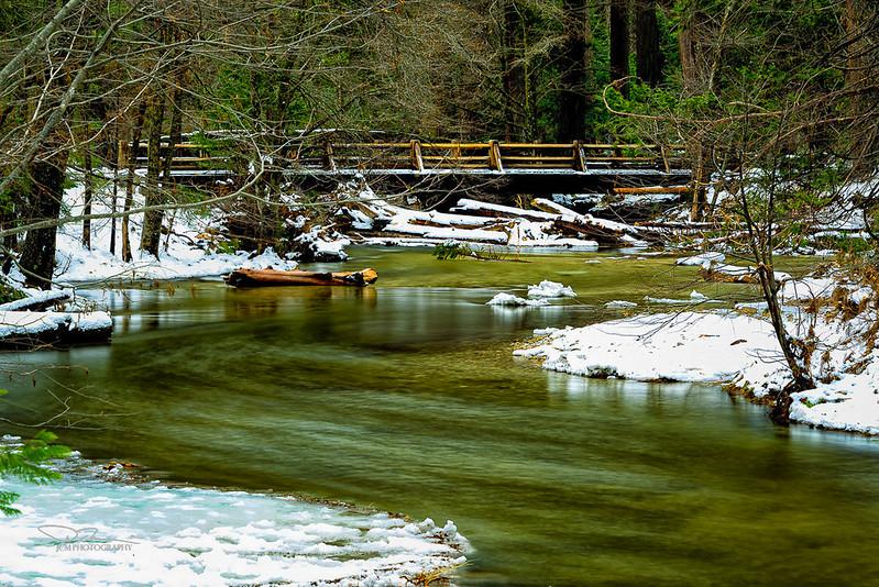 JM7_0581 Yos Creek LPN LM r1.jpg