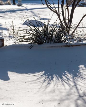030515 Dallas Snow