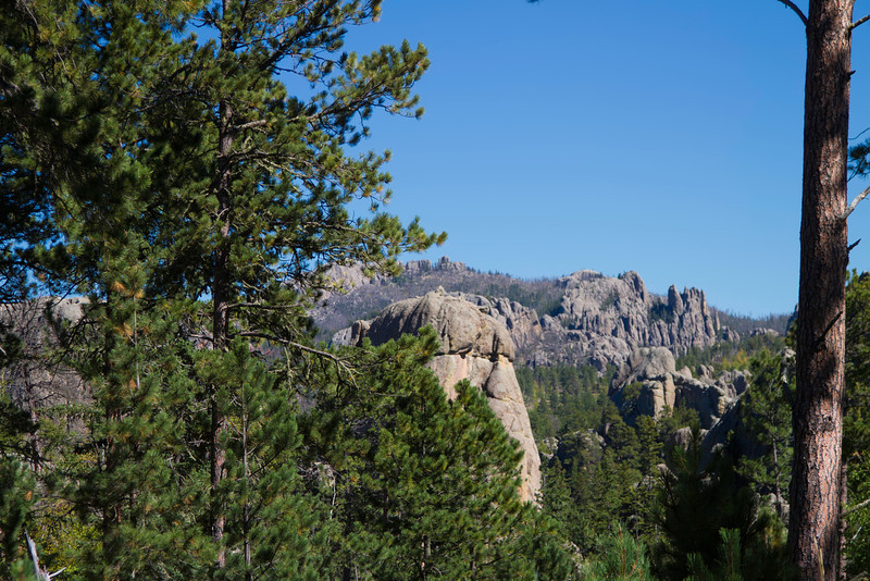 05_Needles Highway_South Dakota-7.jpg
