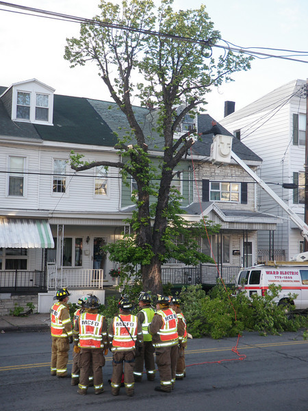 mahanoy city tree incident 5-8-2010 028.JPG